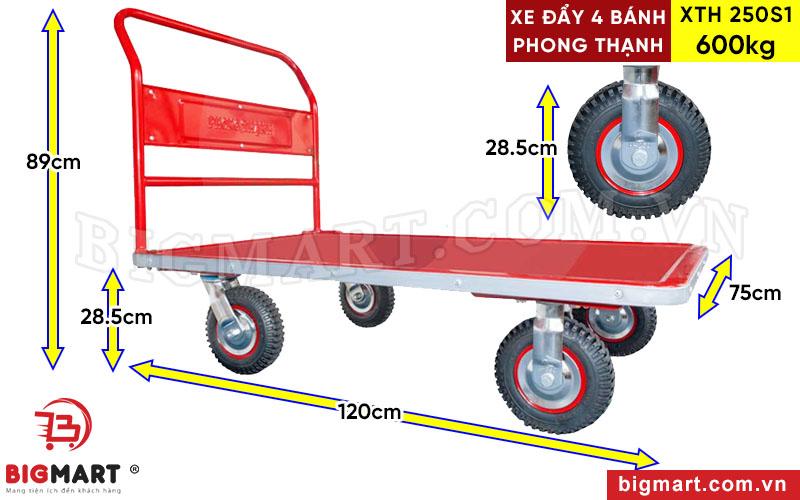 Kích thước xe đẩy hàng XTH 250S1